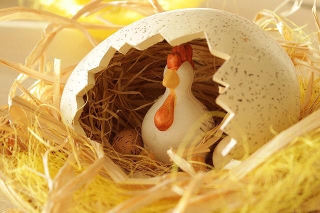 problème œuf poule marketplace